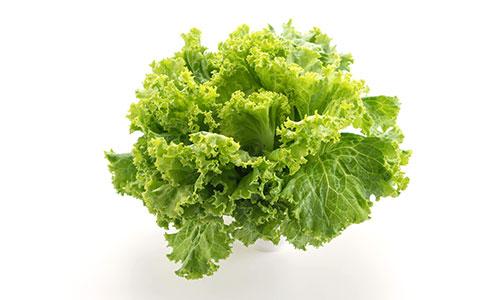 insalate-a-km0-agricola-paderno-rettangolare