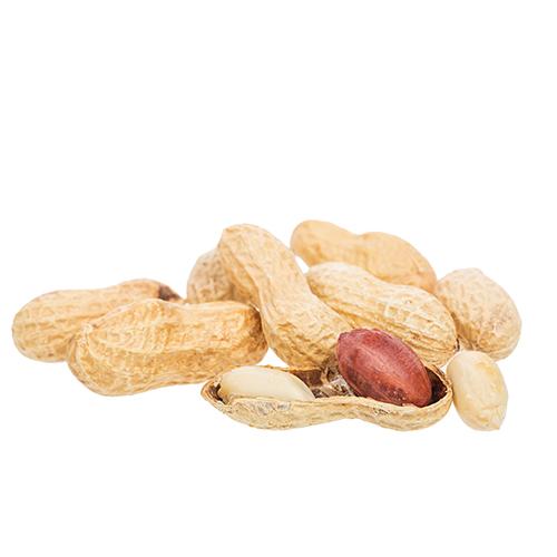 arachidi-frutta-secca-foto-sgusciate